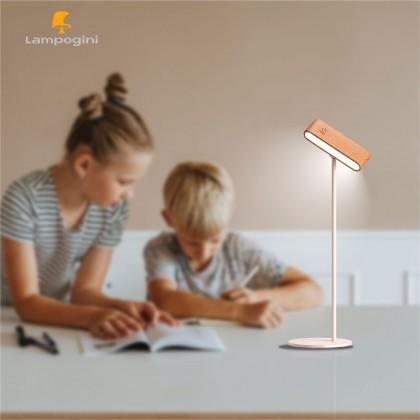Multifunctional Portable Reading Lamp
